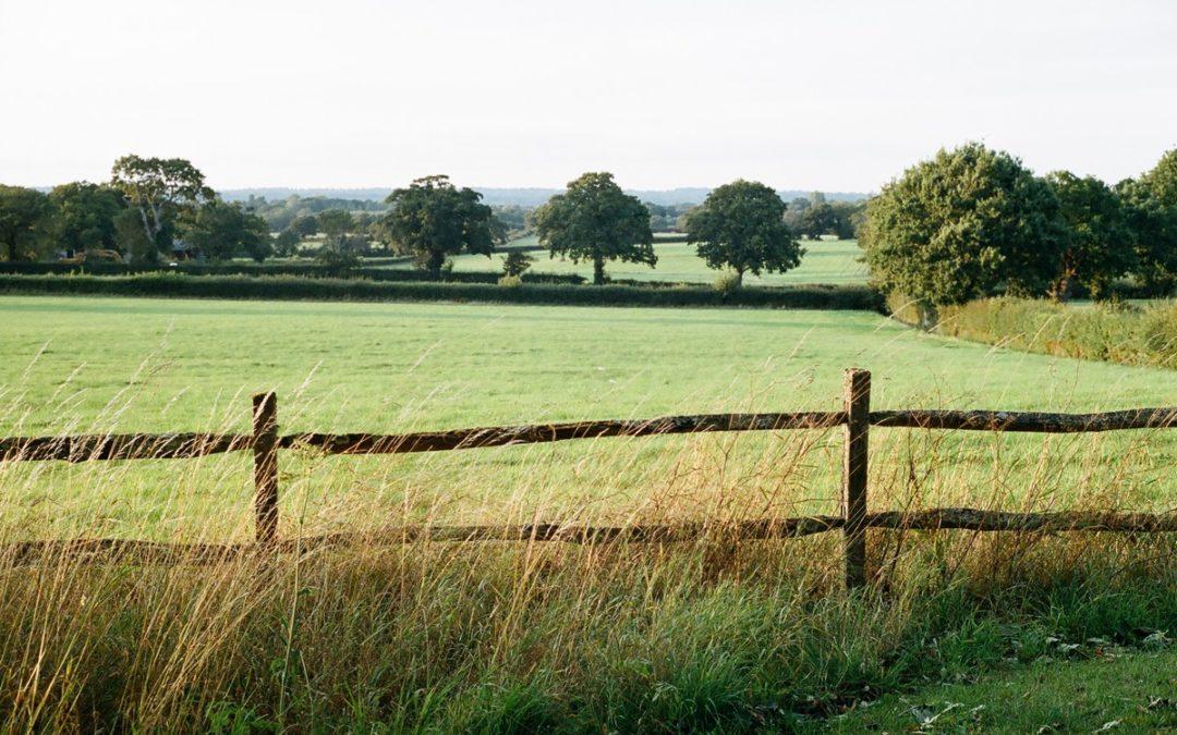 La Clayton Wickham Farmhouse, un cottage anglais chic