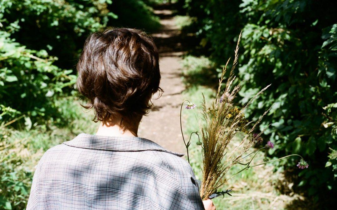 A la cueillette de plantes sauvages: guide pratique et savoureux